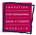 Daniel & Florence Guerlain Contemporary Art Foundation 2016 Drawing Prize