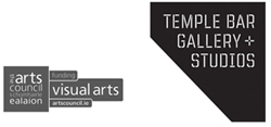 Seeking Director of Temple Bar Gallery + Studios (TBG+S)